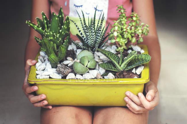 Ragazza che tiene l'esposizione di piante grasse — Foto stock