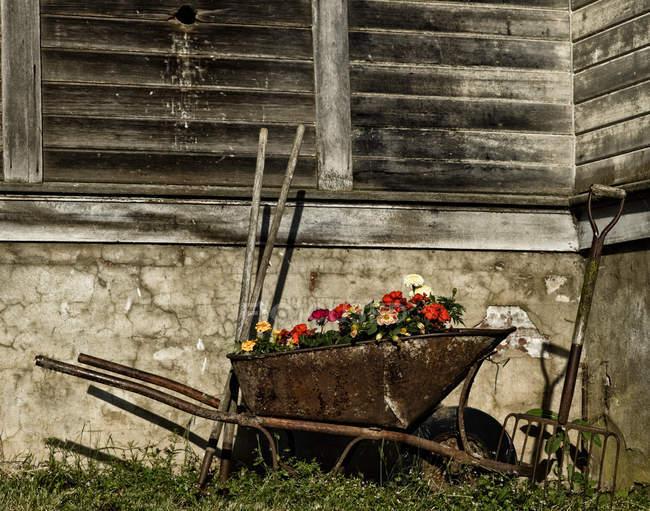 Country wheelbarrow near wall — Stock Photo