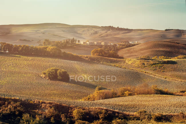 Rolling landscape at sunny day — Stock Photo