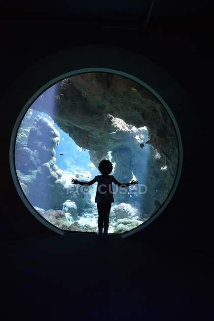 Silhouette of girl looking in aquarium — Stock Photo