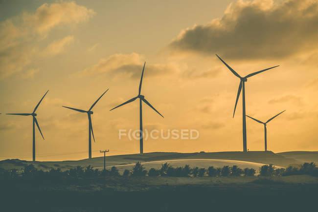 Rangée d'éoliennes au coucher du soleil — Photo de stock
