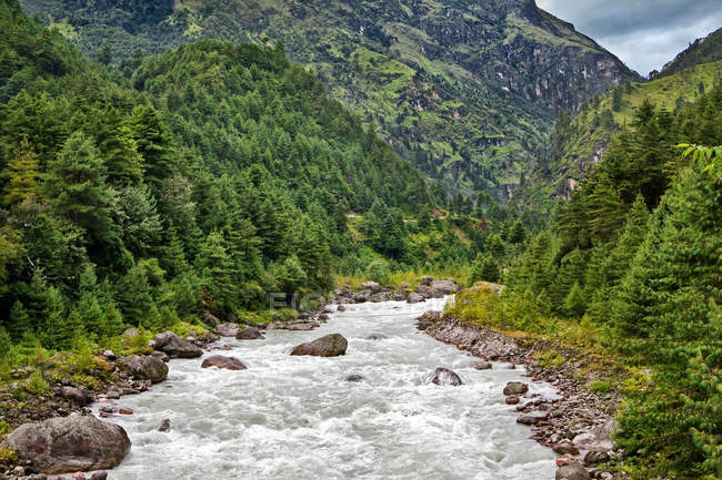 River flowing from himalaya highlands — Stock Photo