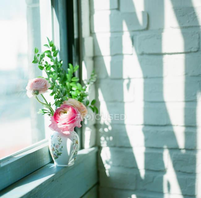 Ranúnculo em vaso no peitoril da janela — Fotografia de Stock