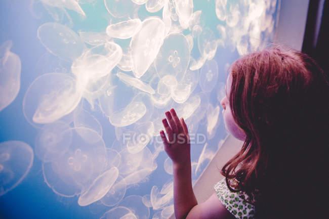 Fille regarder méduses dans l'aquarium — Photo de stock