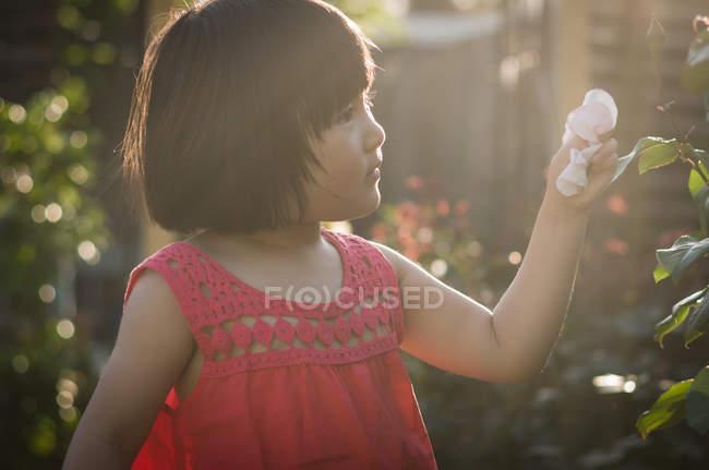 Menina com pétalas de rosa na mão — Fotografia de Stock