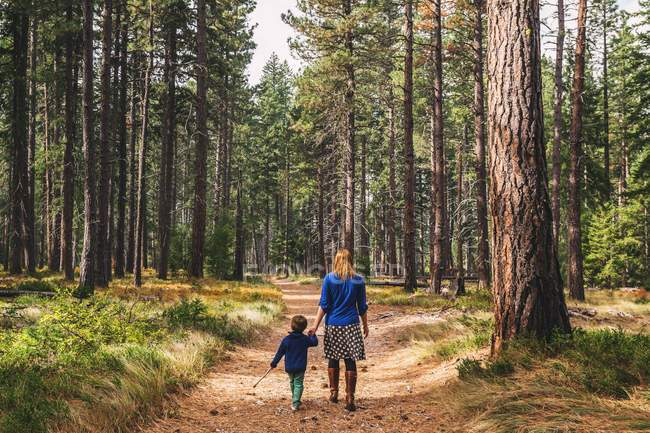 Mother walking with son in forest — Stock Photo