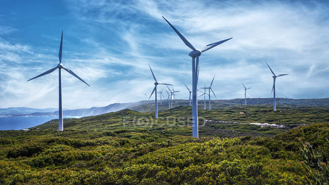 Wind Turbines on Wind Farm — Stock Photo