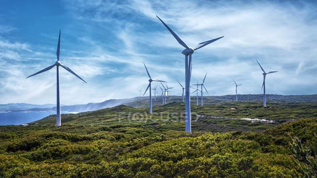 Turbinas eólicas no parque eólico — Fotografia de Stock