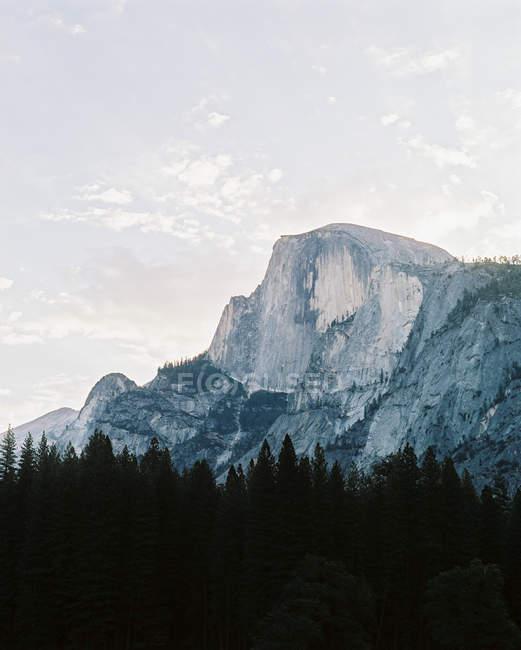 Національний парк Йосеміті — стокове фото