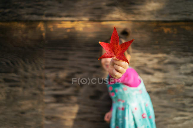 Girl holding leaf — Stock Photo