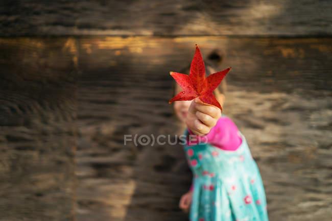 Девушка держит лист — стоковое фото