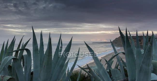 Algarve Coast at dusk — Stock Photo