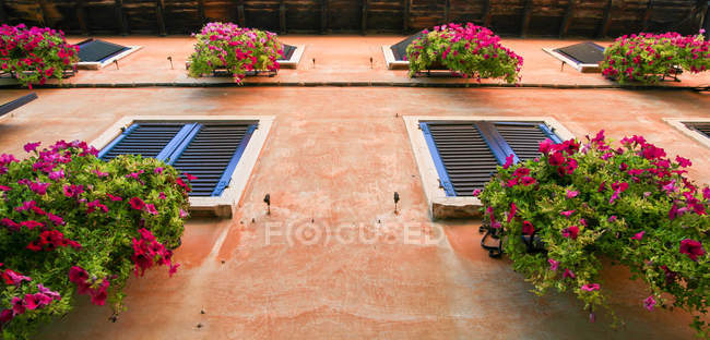 Building exterior with flower boxes — Stock Photo