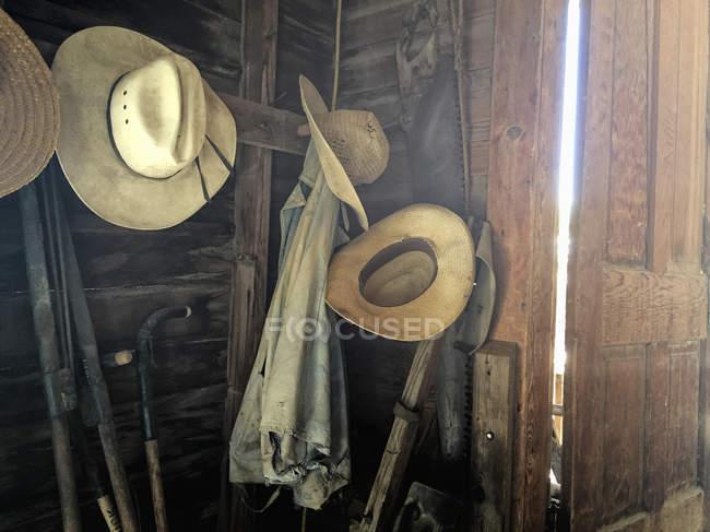 Ferramentas e velhos chapéus de jardinagem — Fotografia de Stock