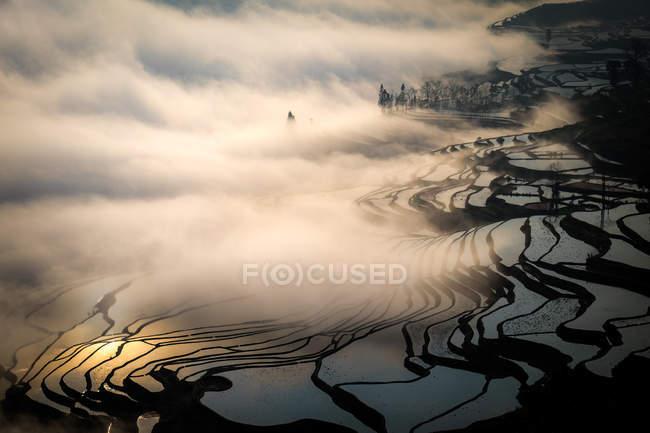 Рисових терас в туман — стокове фото