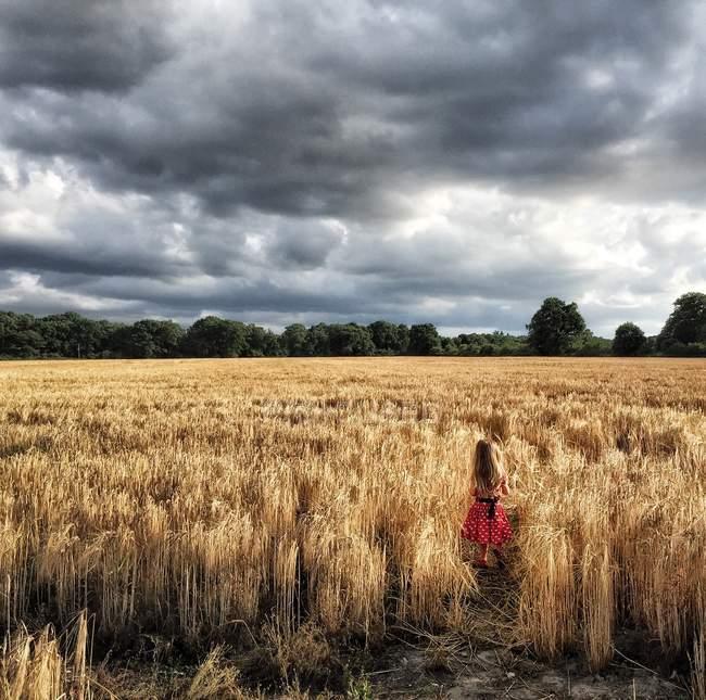 Ragazza che cammina attraverso il campo di grano — Foto stock