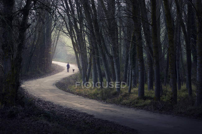 Pessoa caminhando com cão — Fotografia de Stock