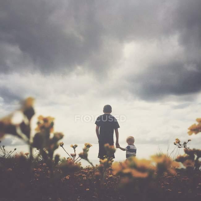 Vue arrière de deux garçons tenant la main — Photo de stock