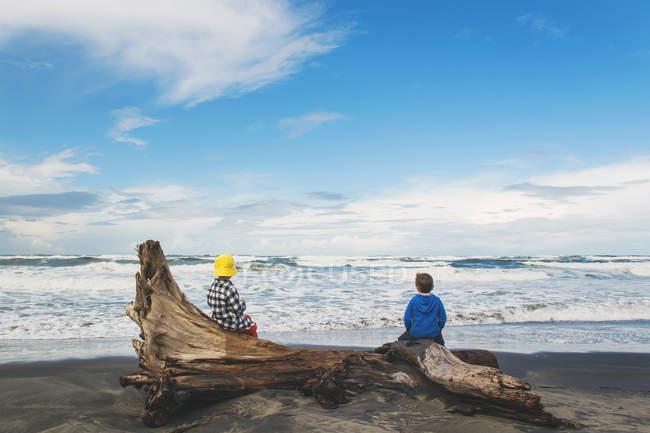 Niños sentados en driftwood en la playa - foto de stock
