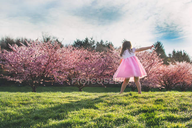 Girl spinning on meadow — Stock Photo