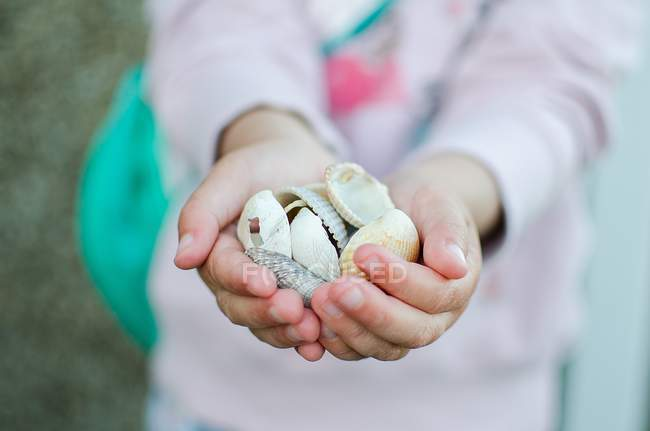 Little girl holding sea shells — Stock Photo