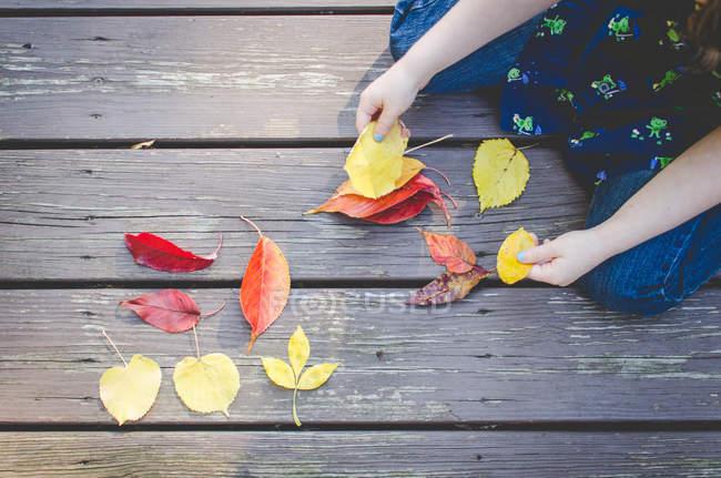 Chica clasificación de hojas de otoño de colores - foto de stock