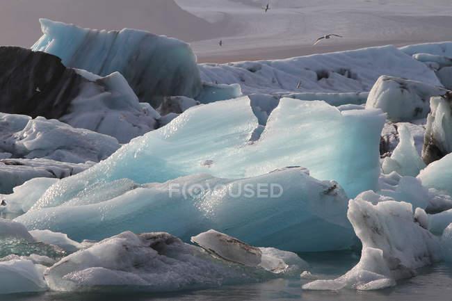 Iceberg nella laguna di Joekulsarlon , — Foto stock