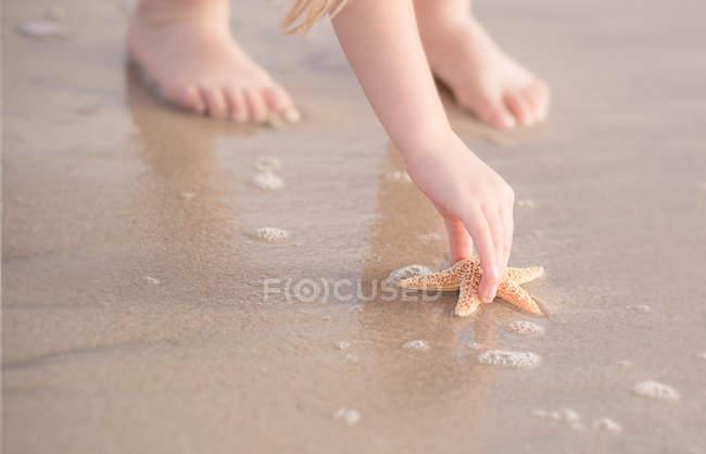 Girl picking up starfish — Stock Photo