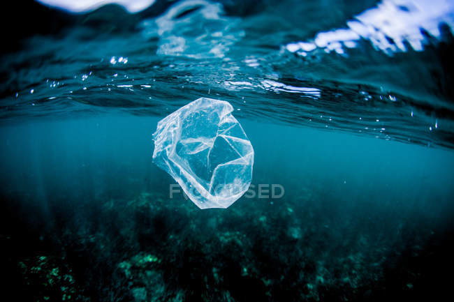 Plastic bag floating over reef — Stock Photo