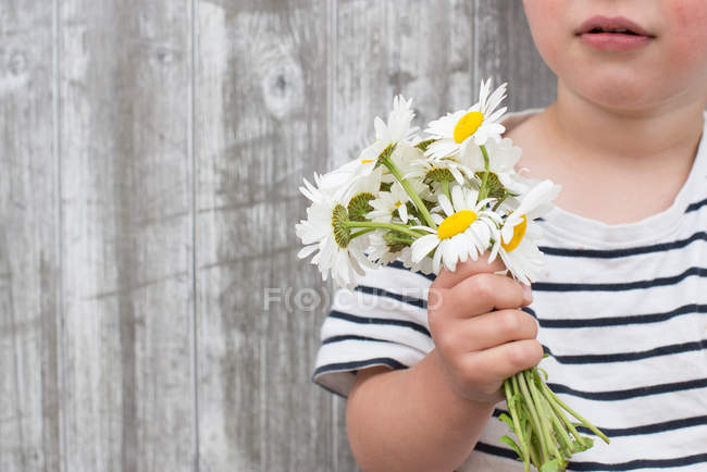 Boy holding bunch of daisies — Stock Photo
