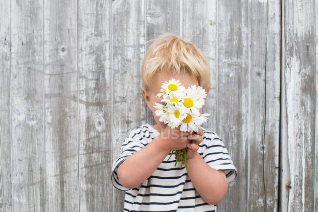 Boy hiding behind daisies — Stock Photo