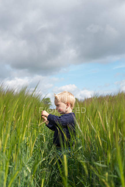 Boy standing in field — Stock Photo