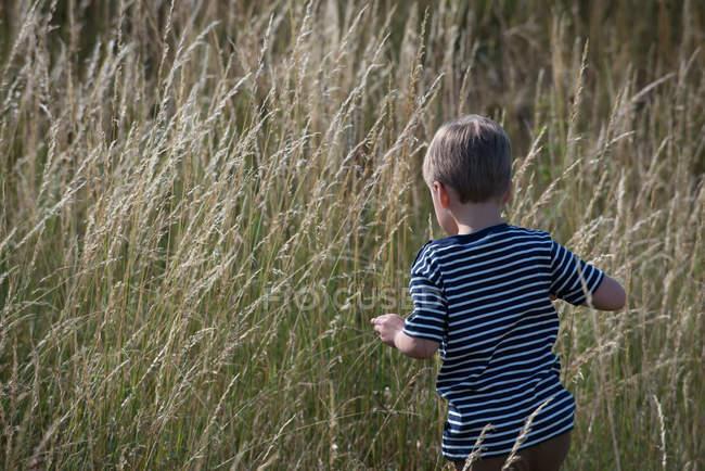 Мальчик гуляет по длинной траве — стоковое фото