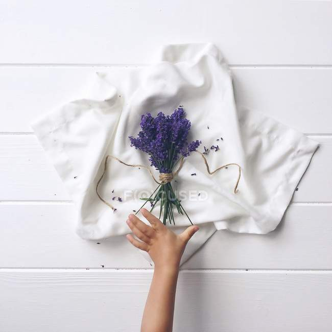 Boy hand reaching for lavender — Stock Photo