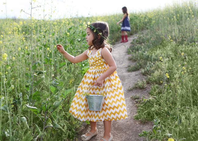 Две девушки собирают цветы — стоковое фото