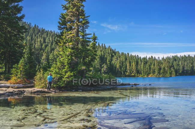 Hombre de pie por lago de la montaña - foto de stock