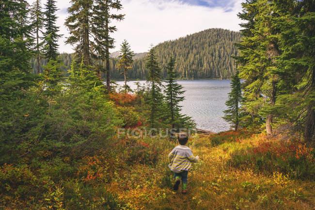 Junge läuft durch Wald — Stockfoto