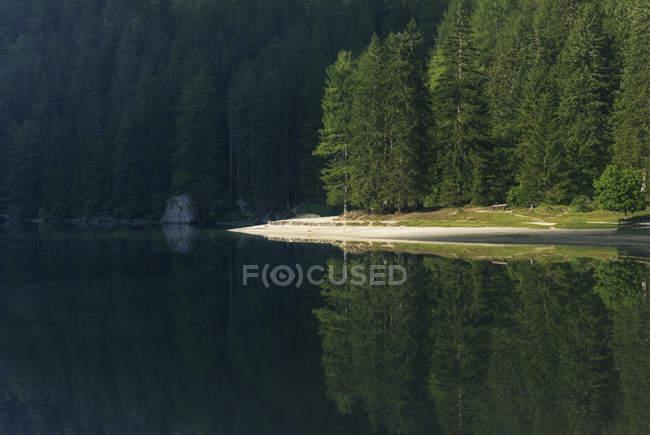Lago en Dolomitas durante el día - foto de stock