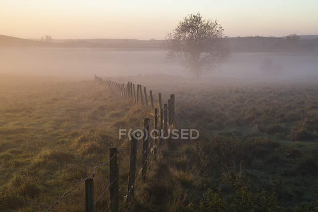 Sunrise and mist over rural field — Stock Photo