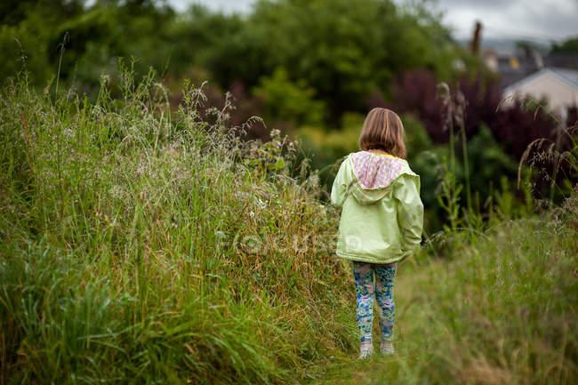 Niña caminando en el campo de hierba larga - foto de stock