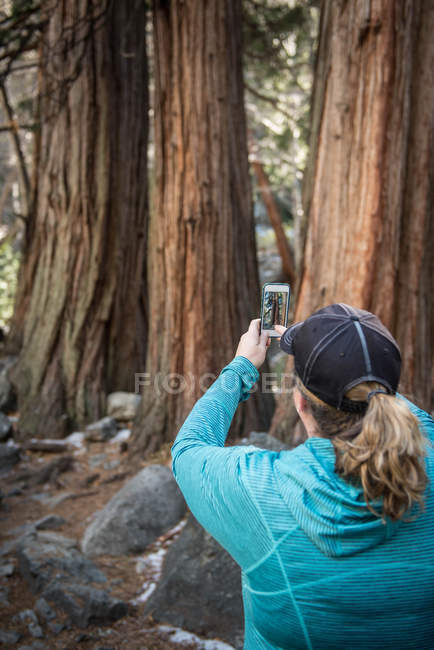 Woman taking a photo with smartphone — Stock Photo