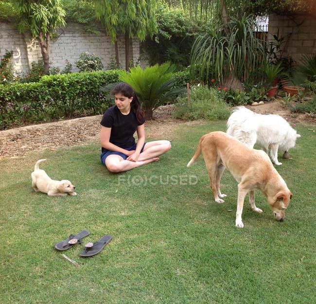 Женщина играет с собаками — стоковое фото
