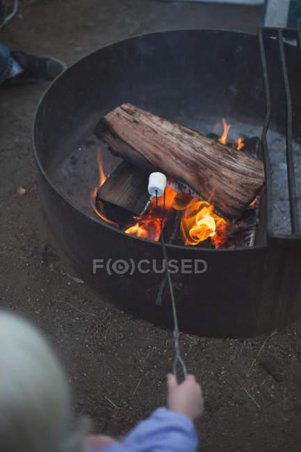 Ragazza tostatura marshmallow — Foto stock