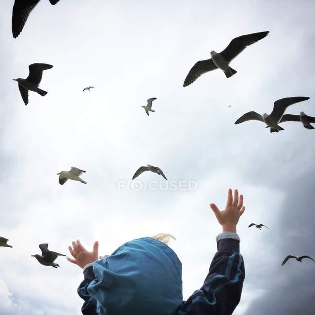 Мальчик, достигая для птиц — стоковое фото