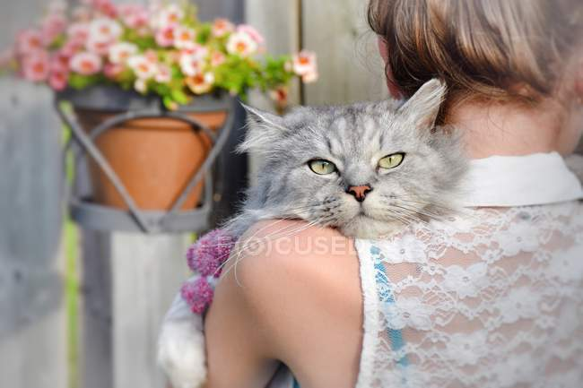 Visão traseira da menina segurando um gato — Fotografia de Stock
