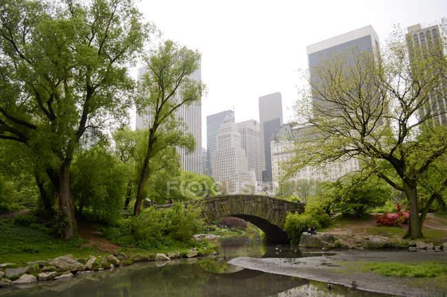 Estanque en Central Park, Manhattan, NY, Estados Unidos - foto de stock