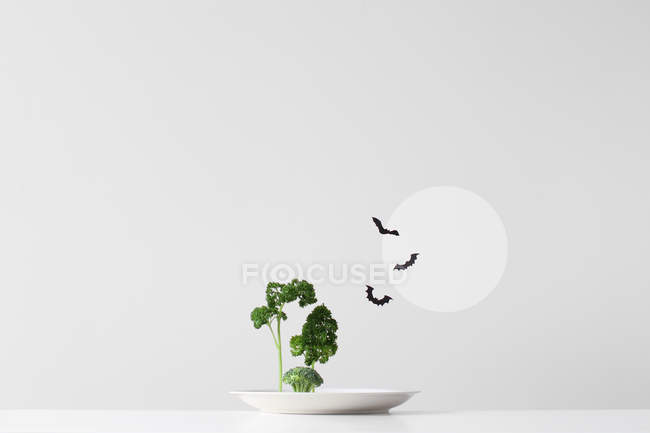 Conceptual spooky forest made up of green herbs and vegetables on a plate against grey wall — Stock Photo