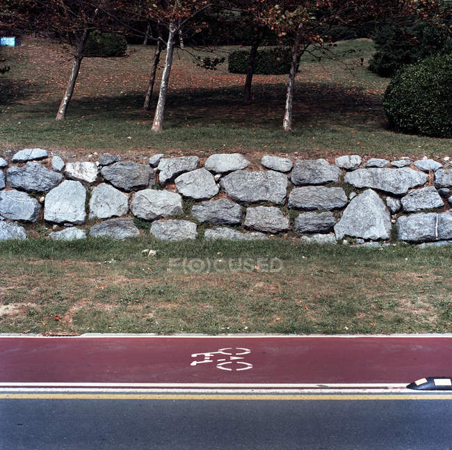 Bicycle path next to road at park — Stockfoto