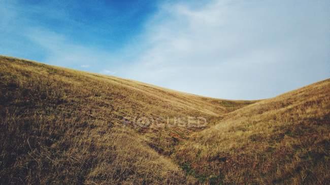 Мальовничий вид на пагорби гора Diablo, Каліфорнія, США — стокове фото