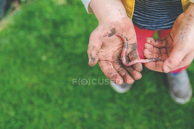 Visão de close-up de menino segurando minhoca da terra em mãos — Fotografia de Stock